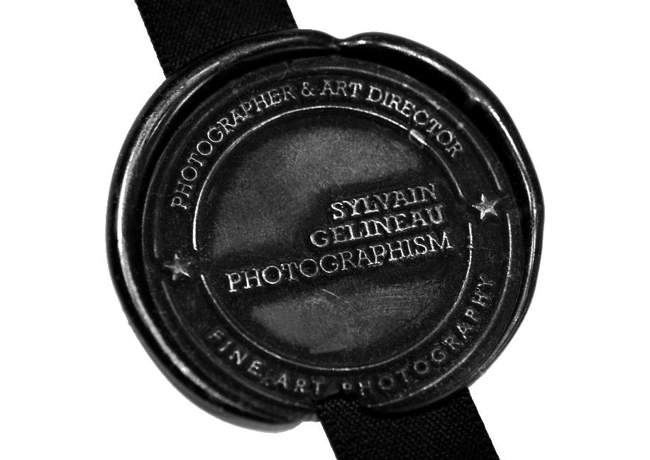 Cachet de cire logo SGP