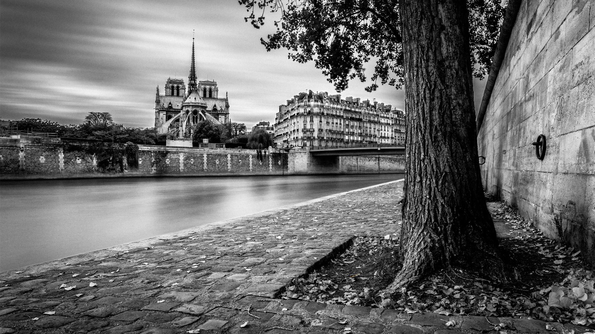 Photographie de Notre Dame de Paris